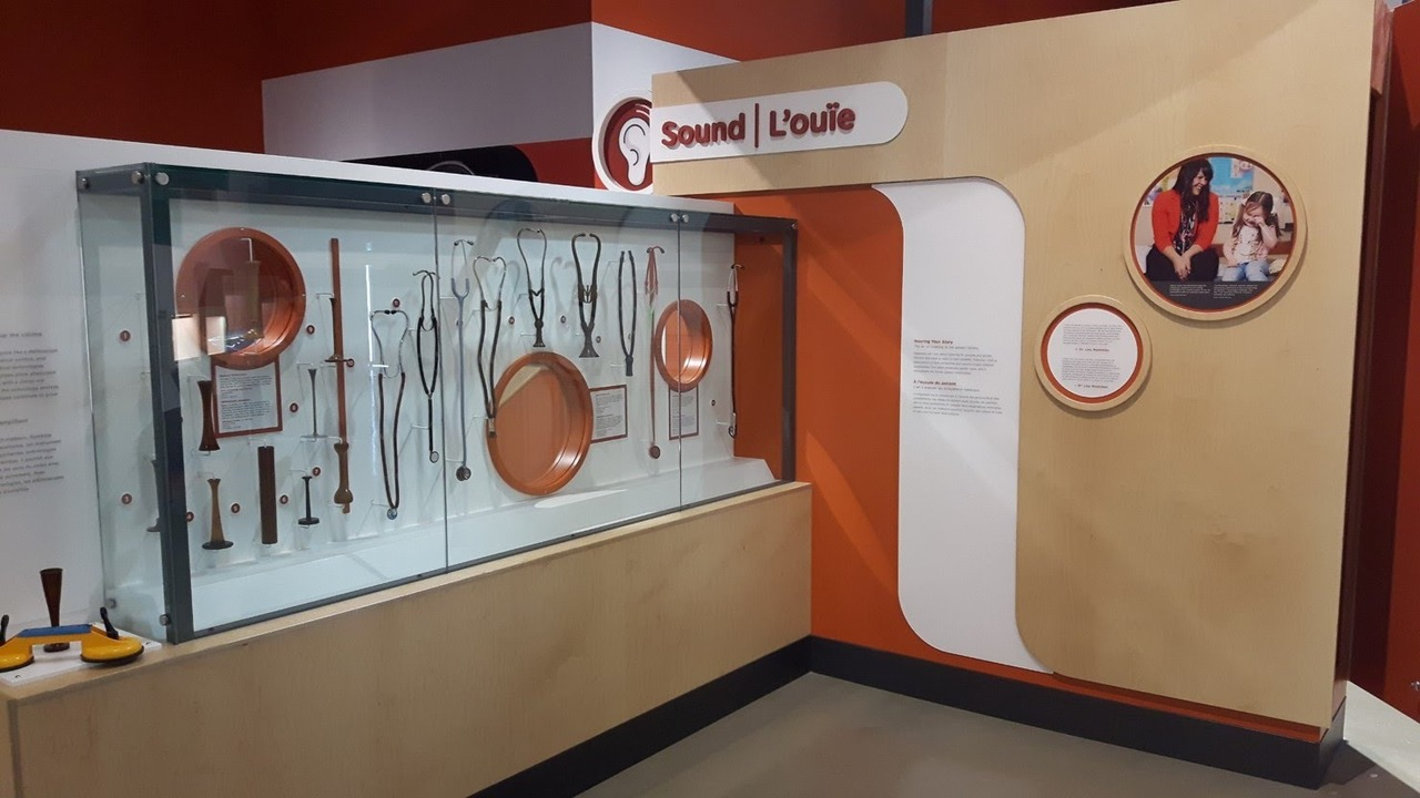 Stethoscopes.jpg